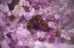 Hennomartinite,   SrMn+++2Si2O7(OH)2•(H2O) (brown), Sugilite, K(Na,□)2Li3(Fe,Mn,Al,Zr)2[Si12O30] (pink), Wessels Mine, Hotazel, Kalahari manganese field, Northern Cape Province, South Africa. Copyright © Stephan Wolfsried 5/2016