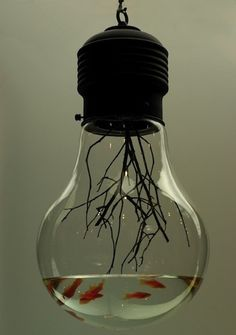Do you have old light bulbs that are not broken? Instead of just throwing them away, you can repurpose them as some creative things. Check out this list of Creative Light Bulb DIY Ideas and try one of them. Aquarium Design, Aquarium Ideas, Aquarium Dekor, Aquarium Fish, Aquarium Lamp, Aquarium Decorations, Light Bulb Fish, Light Bulb Art, Cool Ideas