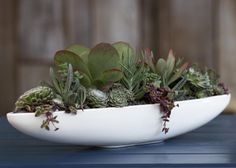 The rounded Canoe Pot, available in 15 colors, from LA-based Bauer Pottery is 24.5 inches long and a mere six inches deep; the dimensions are excellent for a tabletop planter because they will enable you to cram in a maximum number of low shallow-rooted succulents. $125