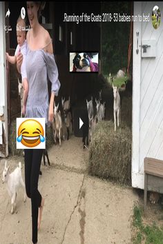 Compilation Videos, Best Mom, Goats, Running, Baby, Racing, Keep Running, Babys, Jogging
