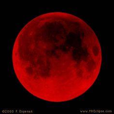 messiah prophecy , #bloodmoon - april 2015
