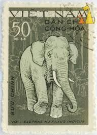 elephant stamps collection