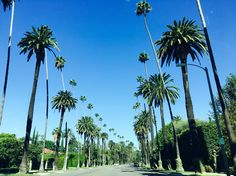 Orange County Day Trips Things To Do Attractions Weekend Getaways With Kids, Stuff To Do, Things To Do, Vacation Destinations, Vacations, City Of Angels, Short Break, Weekends Away, Vacation Packages