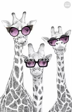 Image about cute in Wallpapers! 🌅🌟🌠 by Nicole Georgia - Uploaded by Nicole Georgia. Find images and videos about cute, cool and funny on We Heart It – th - Giraffe Decor, Giraffe Art, Animal Paintings, Animal Drawings, Art Drawings, Giraffe Pictures, Animal Pictures, Mode Poster, Funny Animals
