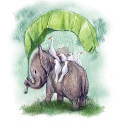 ilustracoes-de-animais-20
