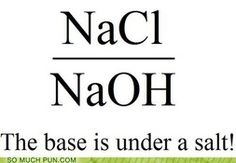 The Base is Under a Salt! - Puns, Puns, Puns! So Much Pun in Pictures
