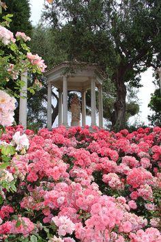 Villa & Jardins Ephrussi de Rothschild : Palais de la côte d'Azur, Saint-Jean-Cap-Ferrat ~ Colette Le Mason @}-,-;---