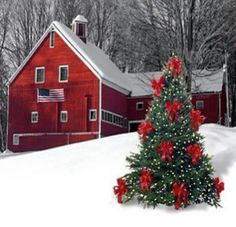 Magical Christmas in the country! red barn and decorated Christmas tree Christmas Scenes, Noel Christmas, Country Christmas, Winter Christmas, All Things Christmas, Christmas Cards, Christmas Decorations, Holiday Decor, Xmas