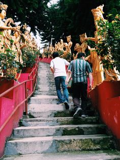Two of my uncles at the Ten Thousand Buddhas Monastery, Sha Tin, Hong Kong. The hall (no photos are allowed) is awe-inspiring and well worth the climb up the mountain / the fact that somehow I was the only one who attracted mosquitoes (I think bugs can detect 'Murricans). // (c) Jenny Lam 2015 // #culture #architecture #traditions #family #travel #photography #travelphotography