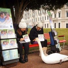Talking about positive attitude with an  interested  one, ( a swan ) while  cart  witnessing ;o)