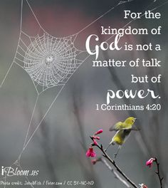 God's kingdom. #Bible