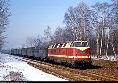 RailPictures.Net Photo: 118 231 Deutsche Reichsbahn V 180 at Arnsdorf, Germany by J Neu, Berlin