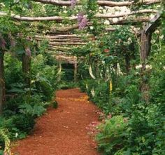 North Hill Garden is one of the hidden treasure of Vermont and the East Coast.