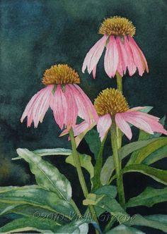 Coneflowers+-+Watercolor.jpg (632×891)