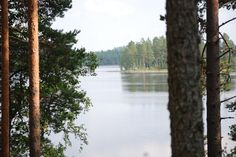 Lake and forest in Finland, Vihijärvi