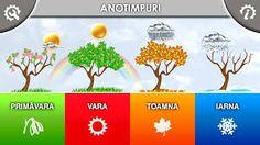 anotimpuri Romanian Language, Learning, Esl, Languages, Writing, Cots, Idioms, Studying, Teaching