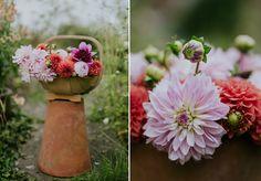 Eva's Photogarden: Dahlia season