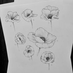 black out tattoo flowers black out tattoo - black out tattoo cover up - black out tattoo negative space - black out tattoo sleeve - black out tattoo with white ink - black out tattoo leg - black out tattoo women - black out tattoo flowers Flower Line Drawings, Flower Sketches, Black Art Tattoo, Black Tattoos, Leg Tattoos, Sleeve Tattoos, Poppy Tattoo Sleeve, Flower Sleeve, Tatoos
