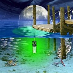lifeform 9 underwater led boat light pinterest lights lakes and