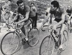 Tour de France 1953. Louison Bobet (1925-1983), Raphaël Geminiani (1925) e Fiorenzo Magni (1920-2012)