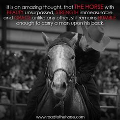 This is one of my favorite quotes of all time. Next time you get on a horse, do not think how you will just get on because you were told to, or you want to, get on because you feel safe and you know the horse it letting you get on it's back while being humble, without the world telling what they want you to do.