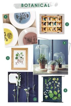 Botanical homeware trend