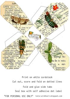 Wild@heart: Friday freebie - butterfly takeout box template