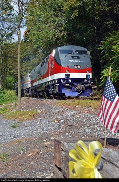RailPictures.Net Photo: AMTK 42 Amtrak GE P42DC at Mount Holly Springs, Pennsylvania by Craig Walker