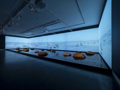 A massive visual art installation incorporating virtual reality technology from South Australia will be exhibited as an official Collateral Event at the 2019 Venice Biennale. Museum Exhibition Design, Exhibition Display, Exhibition Space, Instalation Art, Projection Mapping, Venice Biennale, Stage Design, Virtual Reality, New Art