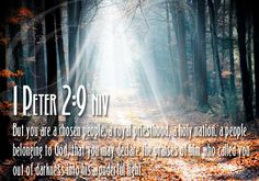 images for Hebrews 12 - Google Search