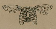 Sara Suppan Untitled, Pen and Ink, Tattoo Sketches, Tattoo Drawings, Art Sketches, Art Drawings, Tumblr Tattoo, Small Tattoos, Weird Tattoos, Pretty Tattoos, Tatoos