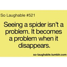 Then the paranoia sets in.is it going to jump me from behind?or is it waiting for me to go to bed then crawl into my weave and lay little spider babies! I Love To Laugh, Just Smile, Really Funny, The Funny, So Laughable, Quotes To Live By, Life Quotes, Lol Text, Funny Quotes