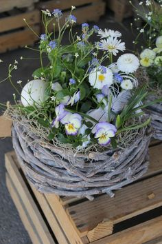 Spring basket white blue - Anne Montesano - # Spring basket # white Best Picture For decor baskets for baby For Your Taste You are looking for something, and it is going to tell Easter Flower Arrangements, Easter Flowers, Spring Flowers, Floral Arrangements, Easter Garden, Spring Garden, Deco Floral, Basket Decoration, Easter Table