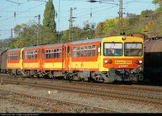 Net Photo: 254 Hungarian State Railways (MÁV) Bzmot at Pestmegye, Hungary by Bahn, Hungary, Trains, Train