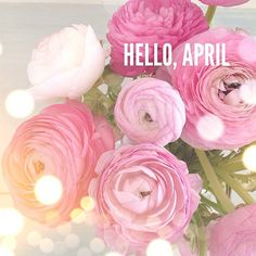 A little premature, but too pretty not to post!  Hello April
