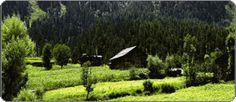 Kashmir Splenders, Kashmir Houseboat Tour Packages, Online Houseboat Reservation, Kashmir houseboat Booking