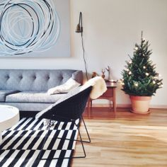 Couch, rug, tree, all of it!