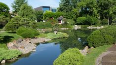 For a quick dose of calm, visit this beautiful Japanese garden in Bloomington, MN. Minnesota, Golf Courses, Calm, Gardens, Tours, Japanese, Water, Outdoor