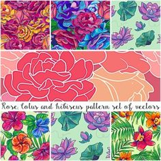 FLORAL PATTERNS HIBISCUS AND LOTUS VECTOR SET - http://freepicvector.com/floral-patterns-hibiscus-and-lotus-vector-set/