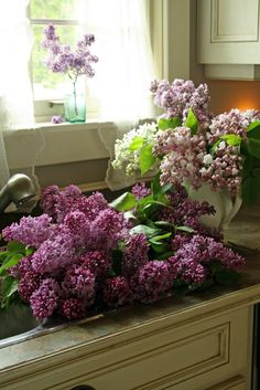 I love the flowers of spring and early summer. Nothing like the fragrance of lilac, honeysuckle, or lily of the valley drifting on a breeze. Lilac Flowers, My Flower, Spring Flowers, Beautiful Flowers, Fresh Flowers, Lilac Bushes, Lavender Cottage, All Things Purple, Lily Of The Valley