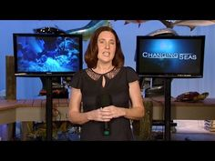 WPBT2 CEO Dolores Sukhdeo Does the ALS Ice Bucket Challenge - YouTube