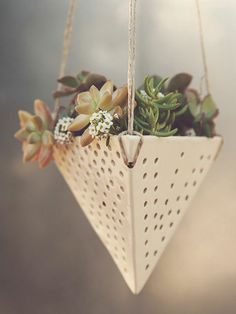 sculpted by hand - for air plants / succulents. Swiss Ceramic Hanging Planter by Latch Key on Scoutmob Ceramic Planters, Ceramic Clay, Ceramic Pottery, Ceramics Projects, Clay Projects, Cactus Y Suculentas, Hanging Planters, Hanging Terrarium, Hanging Succulents