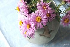 Astern in der Vase – berlingarten Ikebana, Amaryllis, Vase, Bunt, Plants, Flower, Lilac Bushes, Tulips, Decorating Ideas