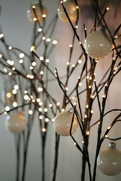 Inspirational Decorative Twigs and Branches
