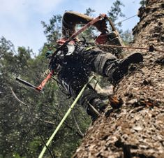 If you are Seeking for Emergency Tree Removal in Steelhead then visit Woodland Tree Services Emergency Tree Removal, Golf Bags, Woodland, How To Remove