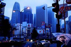Dawn. Shinjuku, Tokyo. (黒ネコ)