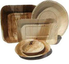 Biodegradable and compostable disposable plates, bowls, cutlery and bio-bags
