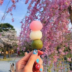 Japanese Culture, Japanese Food, Travel Log, Whats Good, And So The Adventure Begins, Tokyo Japan, Foodie Travel, Travel Inspiration, Handmade