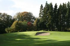 The hole at Moyola Park Golf Club Golf Clubs, Golf Courses, Park, Parks