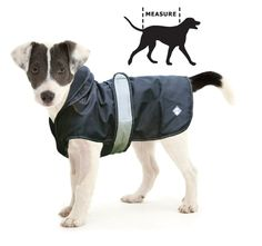 Blue Cross four seasons dog coat £13.99-£19.99